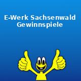 E-Werk Sachsenwald Gewinnspiel